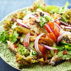 塩鯖とパクチーのタイ風サラダ
