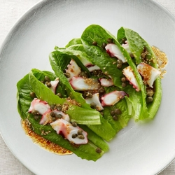 ロメインレタスとたこの韓国風サラダ
