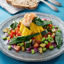 「山の日」えびのECHIGO salad
