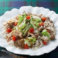シャキシャキ白菜のECHIGO salad
