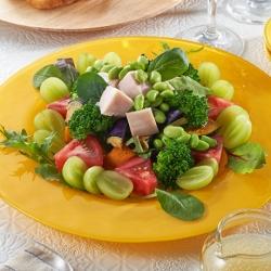 チキンと枝豆のECHIGO salad